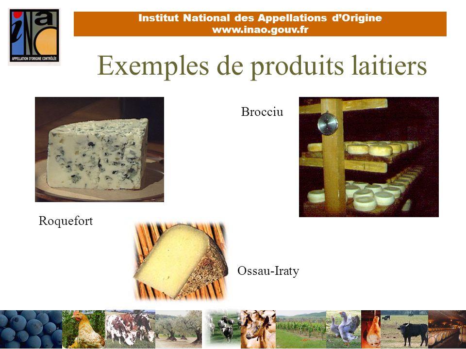 Exemples de produits laitiers