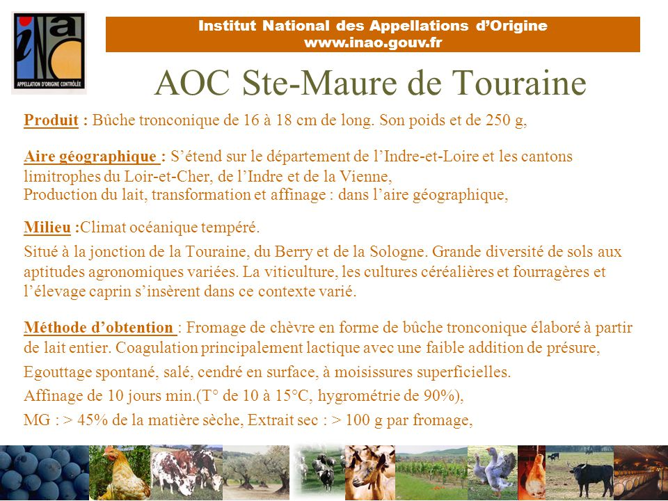 AOC Ste-Maure de Touraine