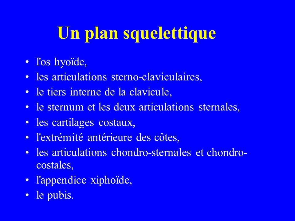 Un plan squelettique l os hyoïde,