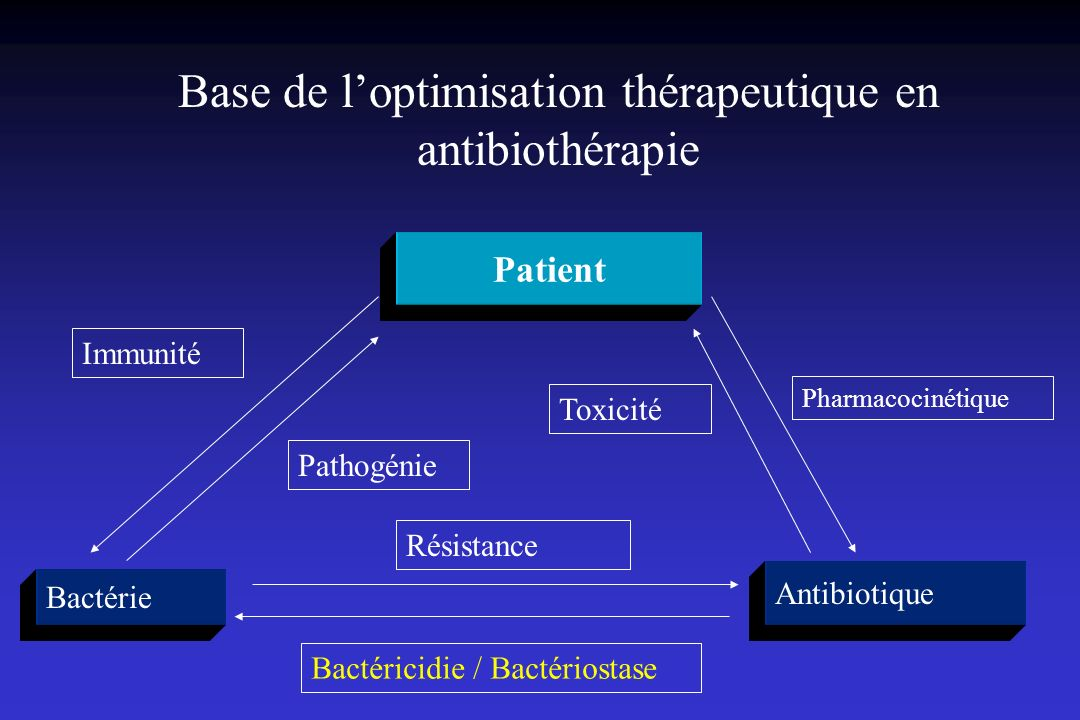 Base de l'optimisation thérapeutique en antibiothérapie