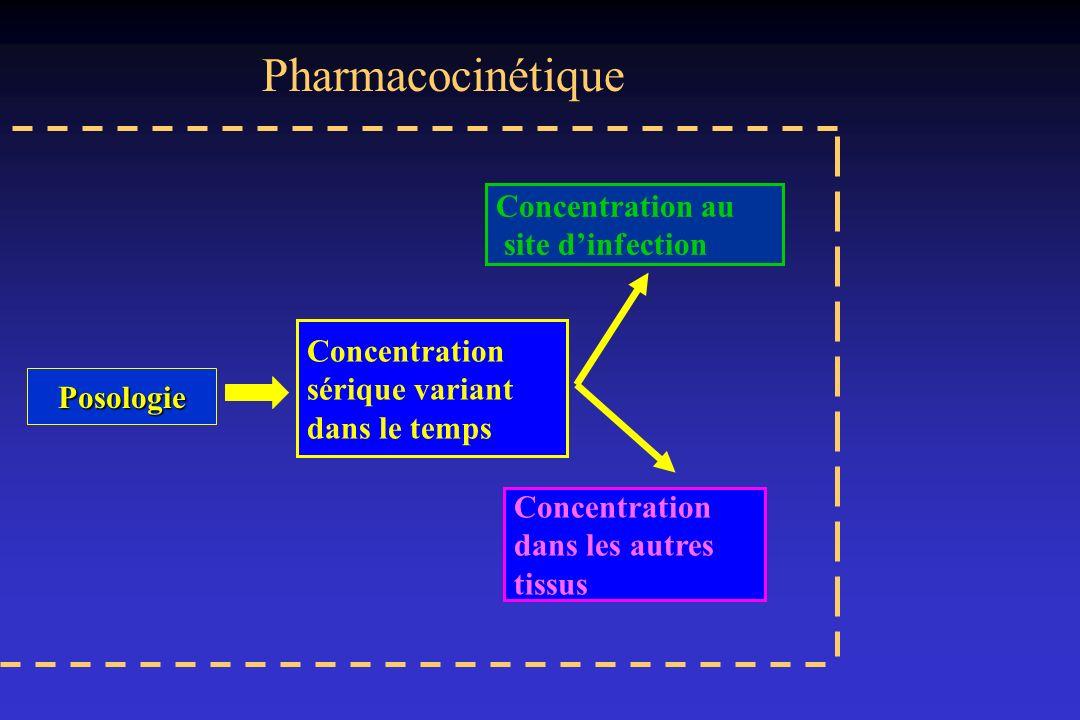 Pharmacocinétique Concentration au site d'infection Concentration