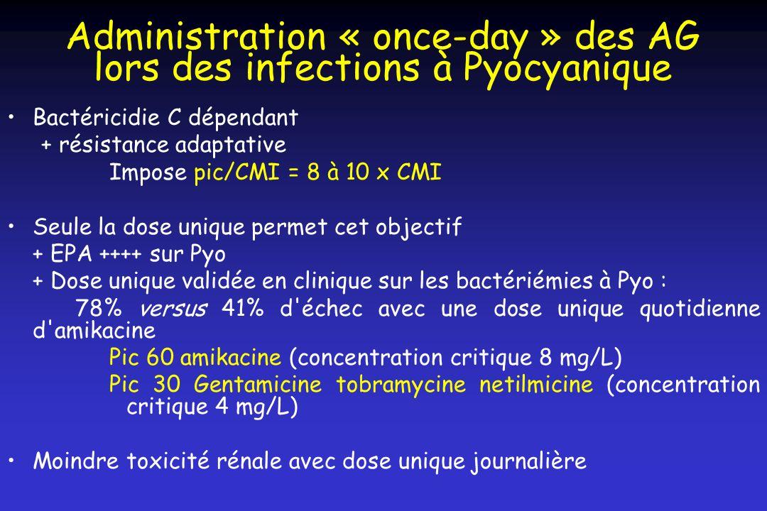 Administration « once-day » des AG lors des infections à Pyocyanique