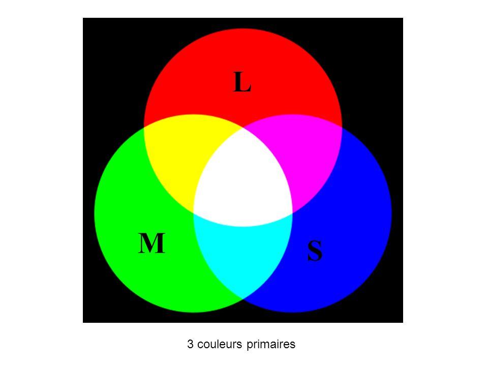 L M S Le spectre visuel est composé de trois couleurs primaires.