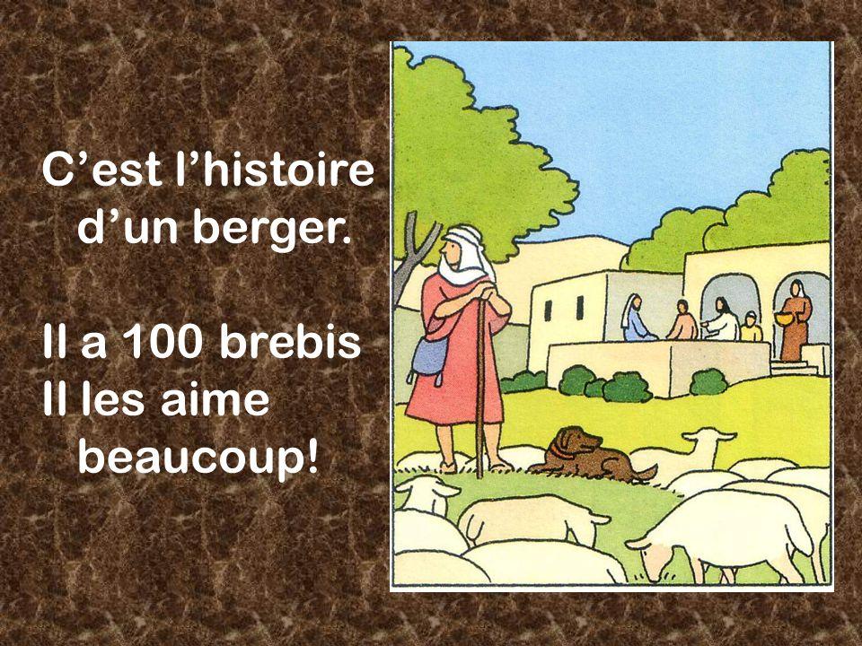 C'est l'histoire d'un berger. Il a 100 brebis Il les aime beaucoup!
