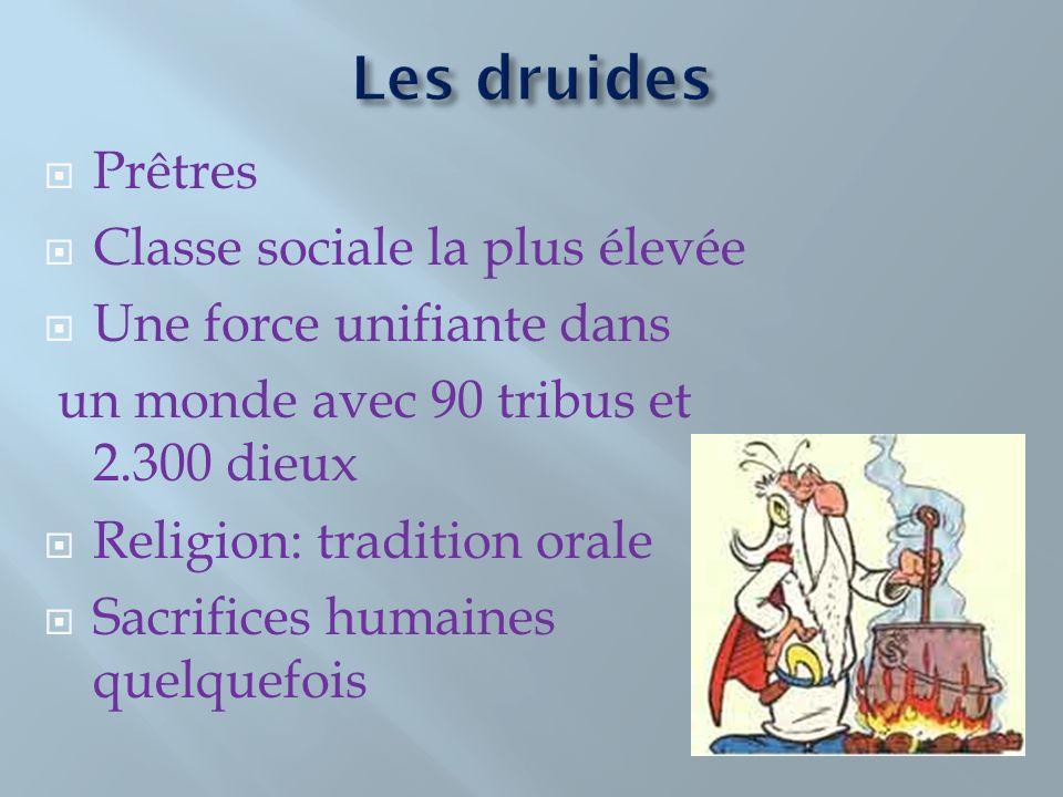 Les druides Prêtres Classe sociale la plus élevée