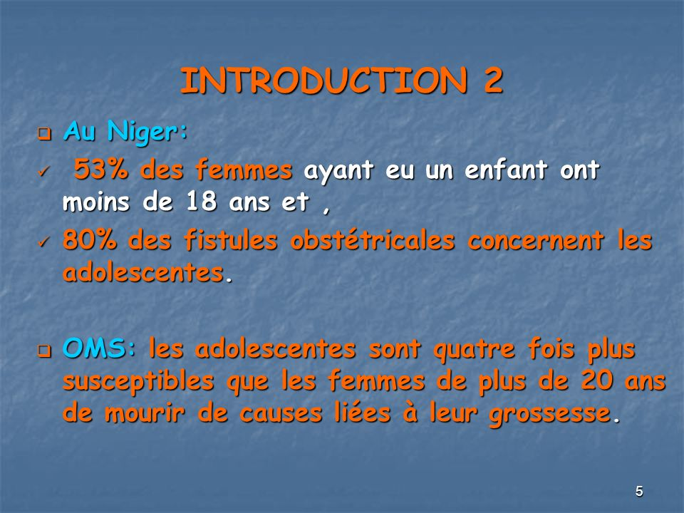 INTRODUCTION 2 Au Niger: