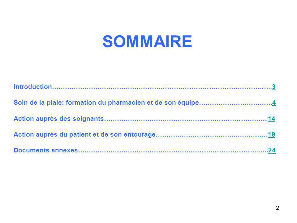 SOMMAIRE Introduction………………………………………………………………………………………..3