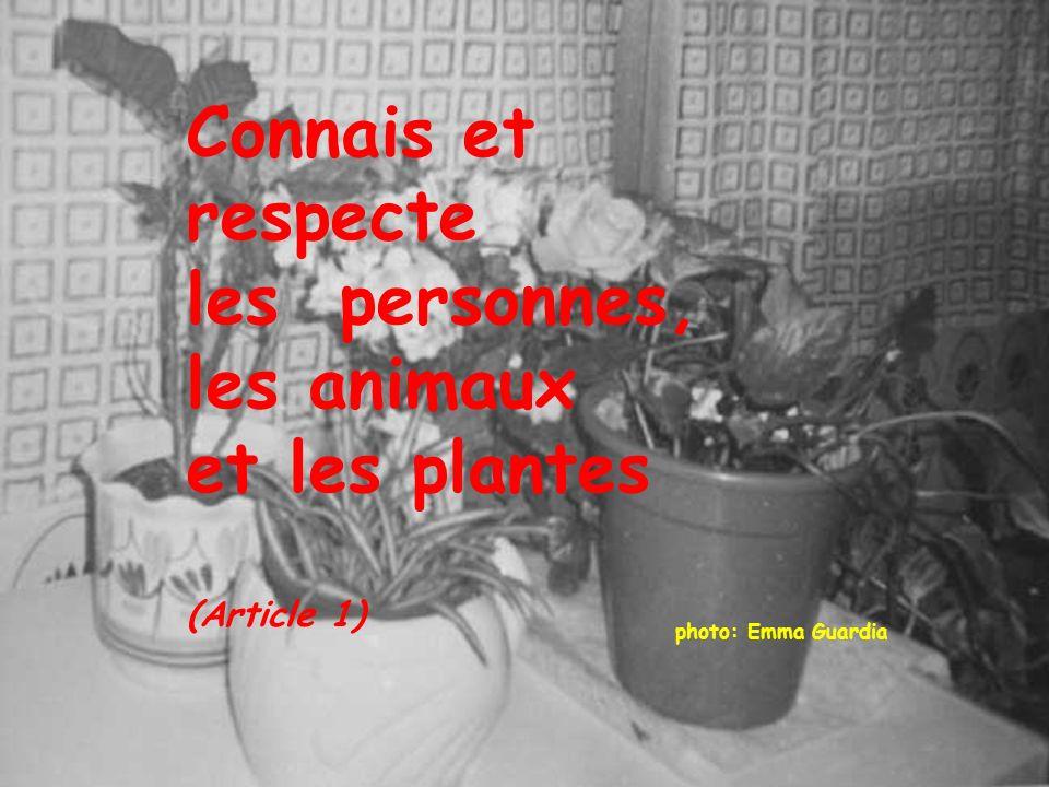 Connais et respecte les personnes, les animaux et les plantes