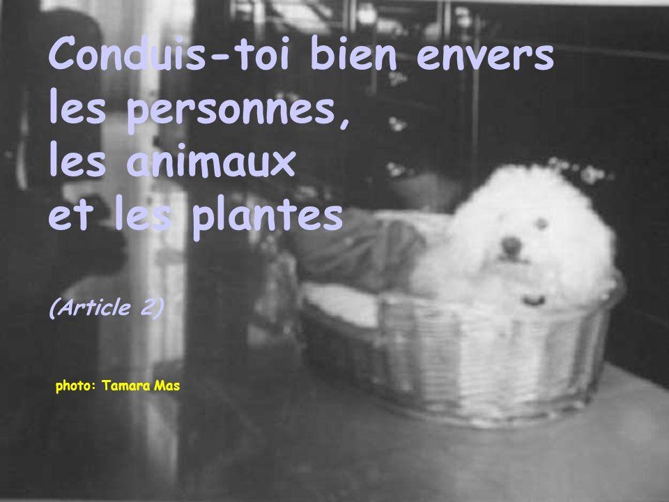 Conduis-toi bien envers les personnes, les animaux et les plantes
