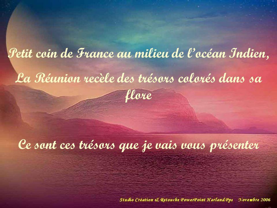Petit coin de France au milieu de l'océan Indien,