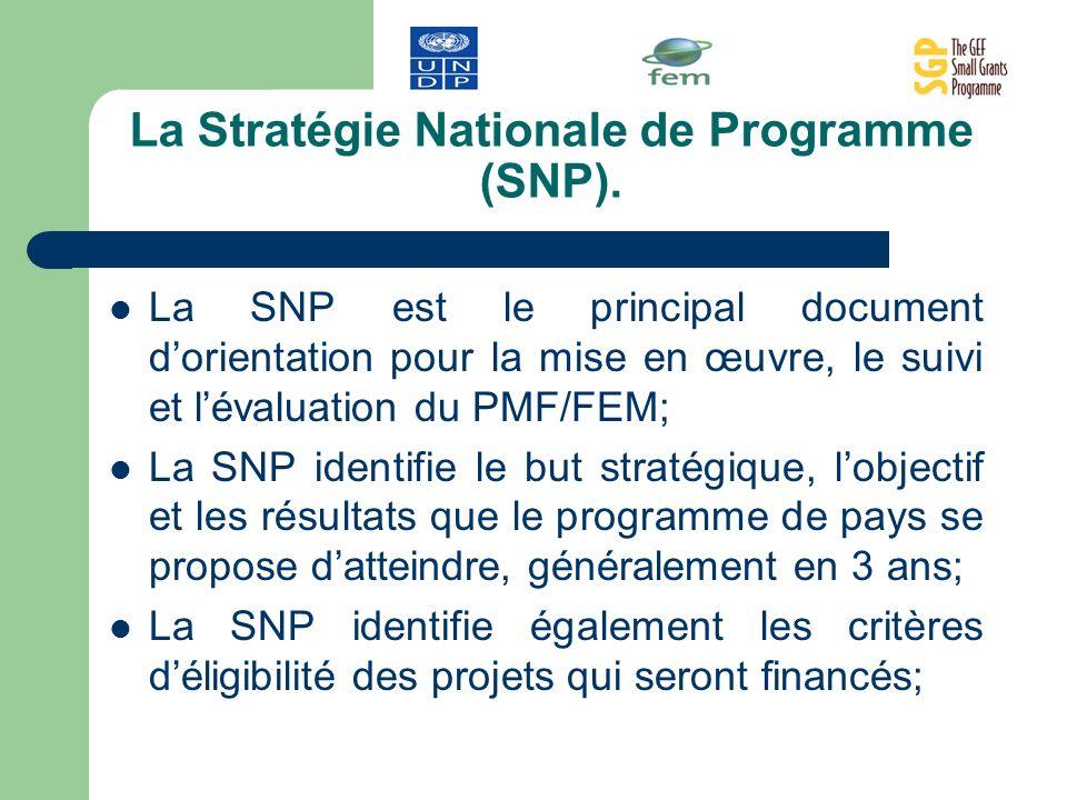 La Stratégie Nationale de Programme (SNP).