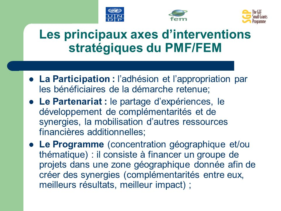 Les principaux axes d'interventions stratégiques du PMF/FEM