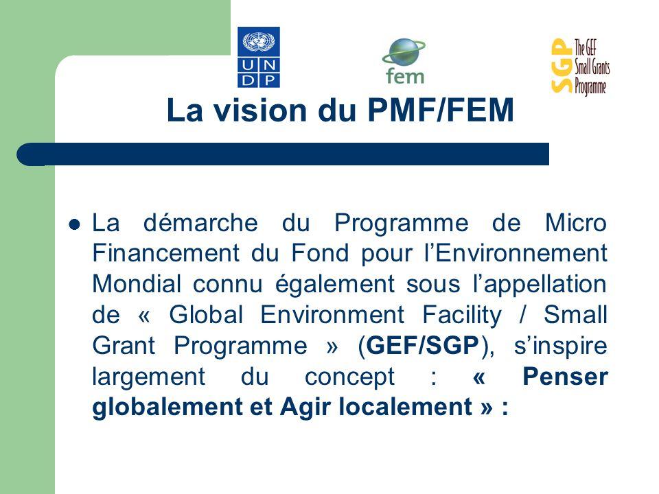 La vision du PMF/FEM