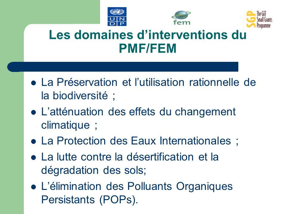 Les domaines d'interventions du PMF/FEM