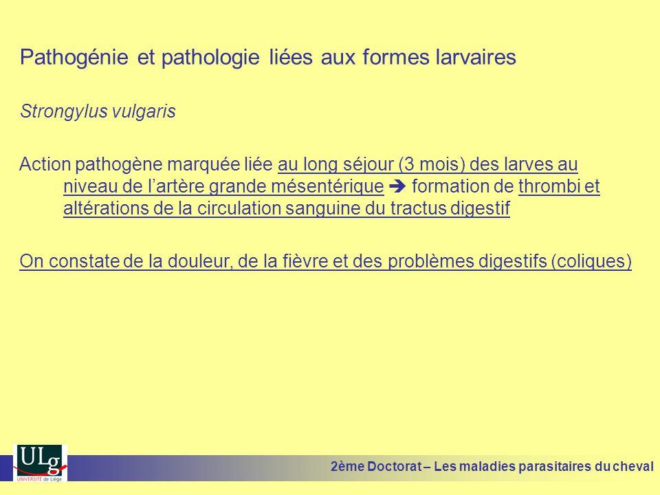 Pathogénie et pathologie liées aux formes larvaires