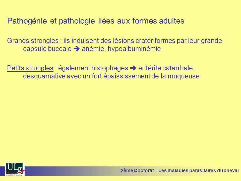 Pathogénie et pathologie liées aux formes adultes