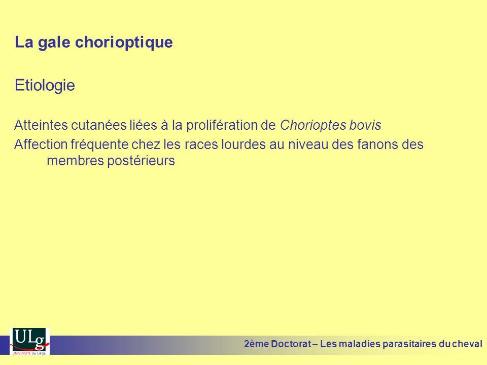 La gale chorioptique Etiologie