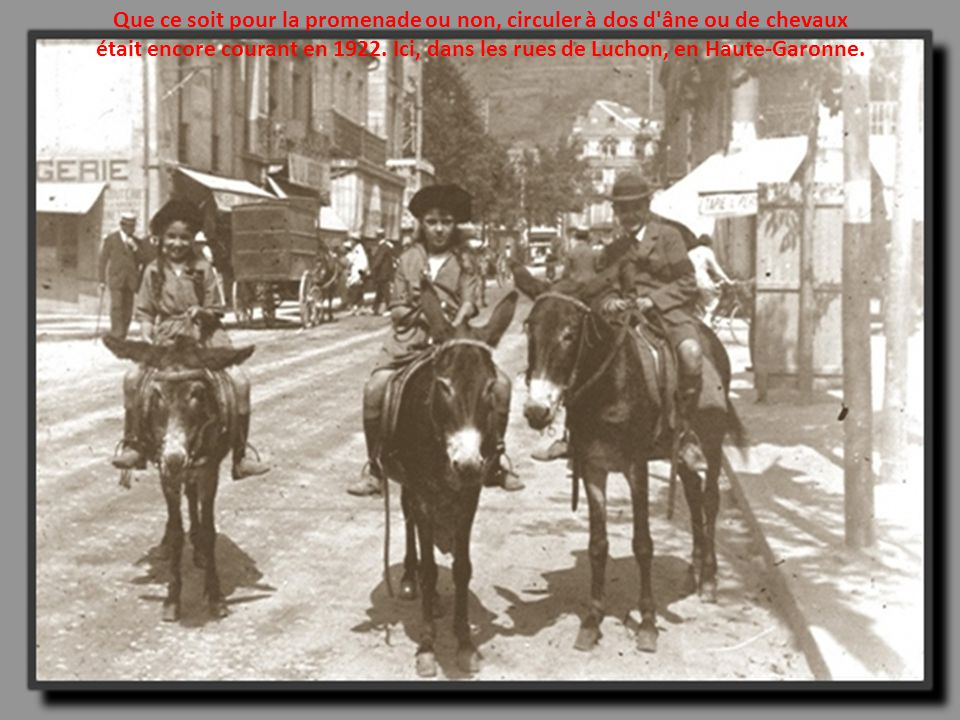 Que ce soit pour la promenade ou non, circuler à dos d âne ou de chevaux