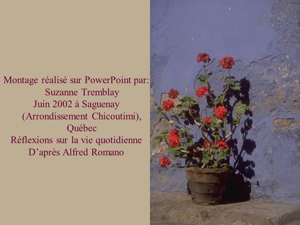Montage réalisé sur PowerPoint par: Suzanne Tremblay