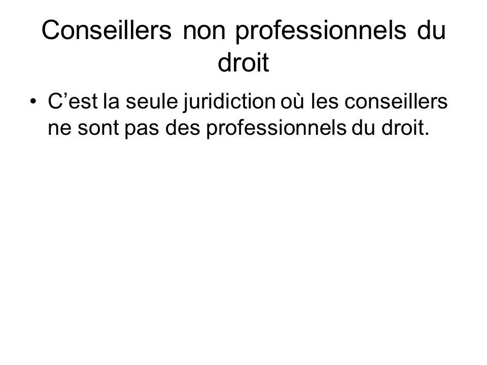 Conseillers non professionnels du droit