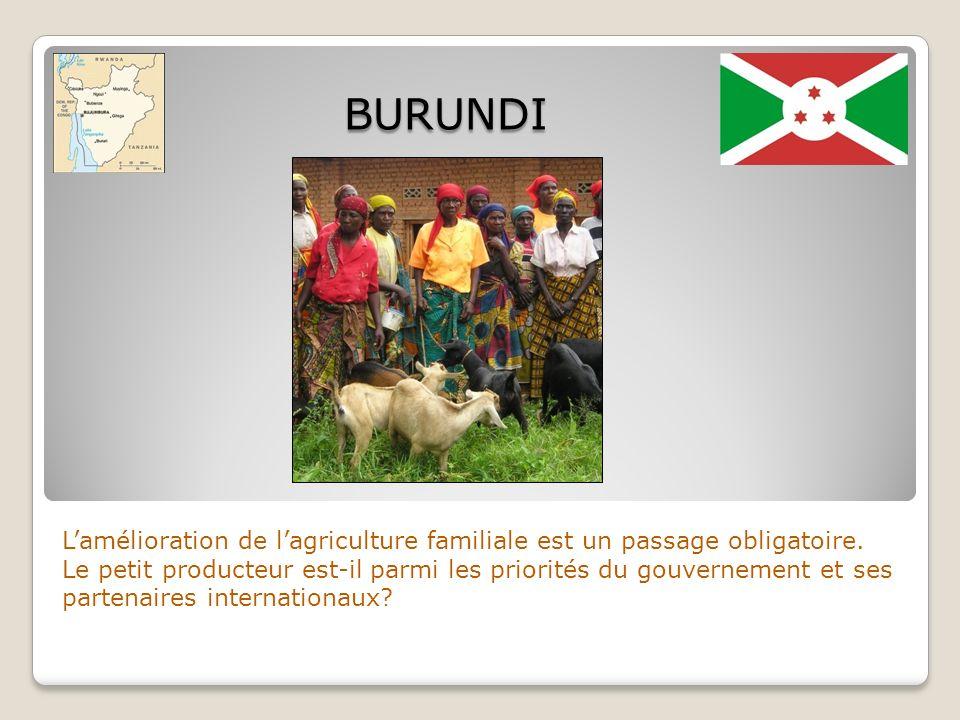 BURUNDIL'amélioration de l'agriculture familiale est un passage obligatoire.