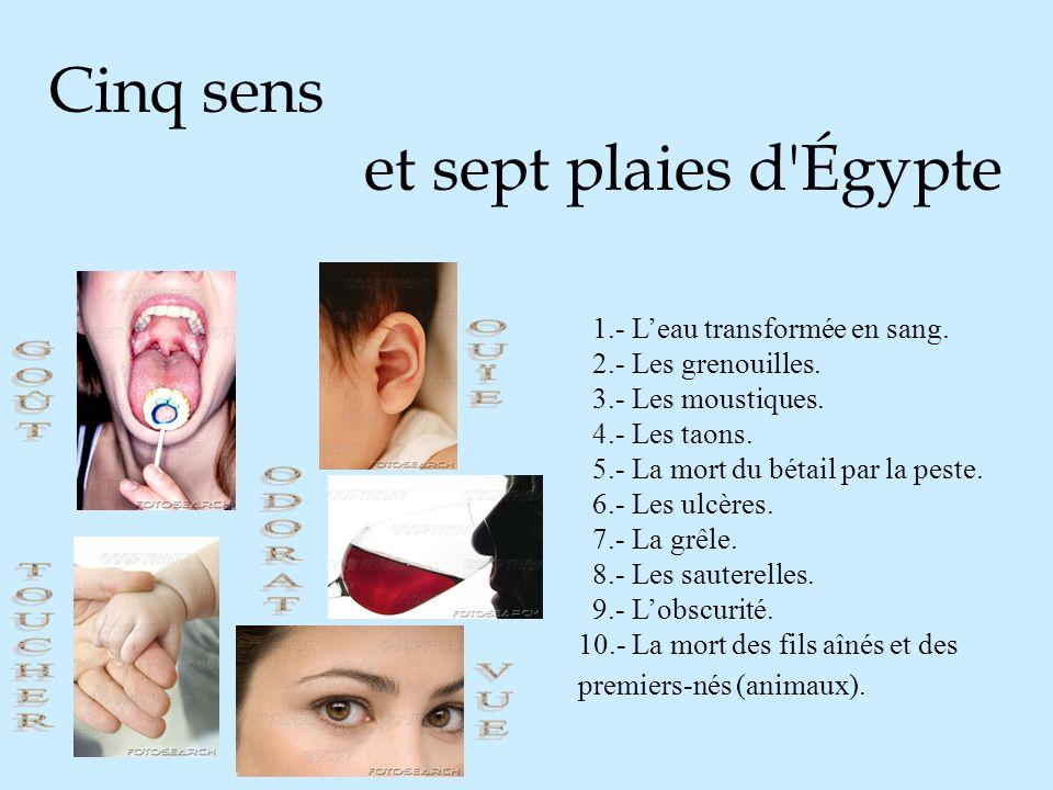 Cinq sens et sept plaies d Égypte