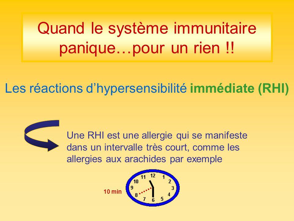 Quand le système immunitaire panique…pour un rien !!