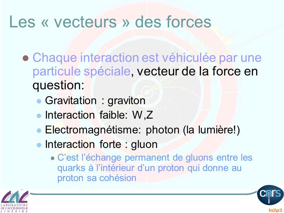 Les « vecteurs » des forces