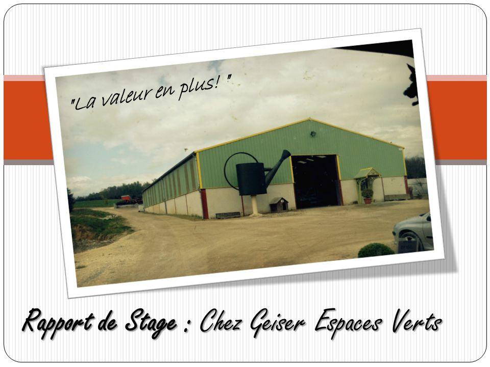 Rapport de Stage : Chez Geiser Espaces Verts