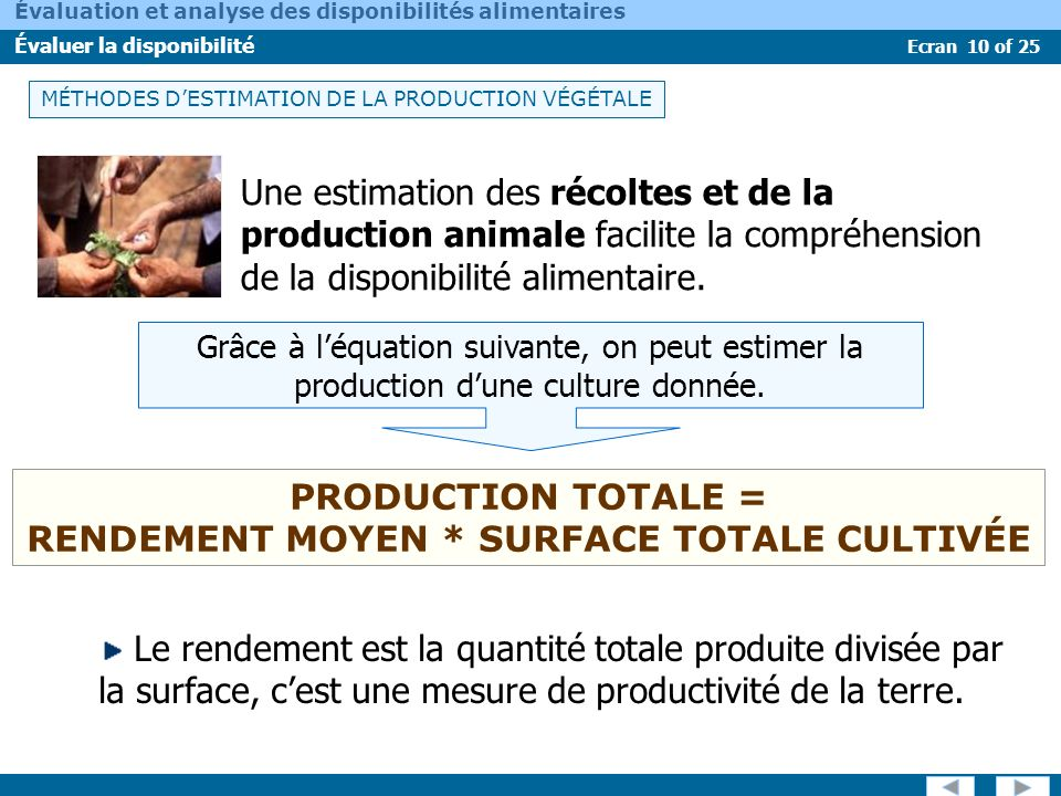 PRODUCTION TOTALE = RENDEMENT MOYEN * SURFACE TOTALE CULTIVÉE