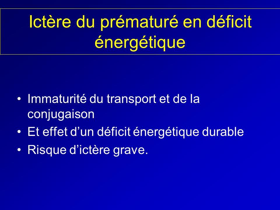 Ictère du prématuré en déficit énergétique