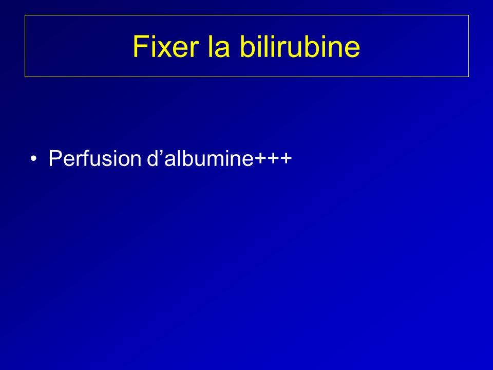 Fixer la bilirubine Perfusion d'albumine+++