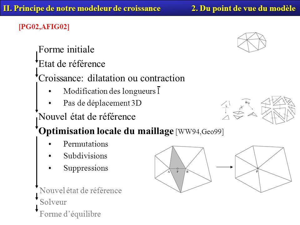 Croissance: dilatation ou contraction