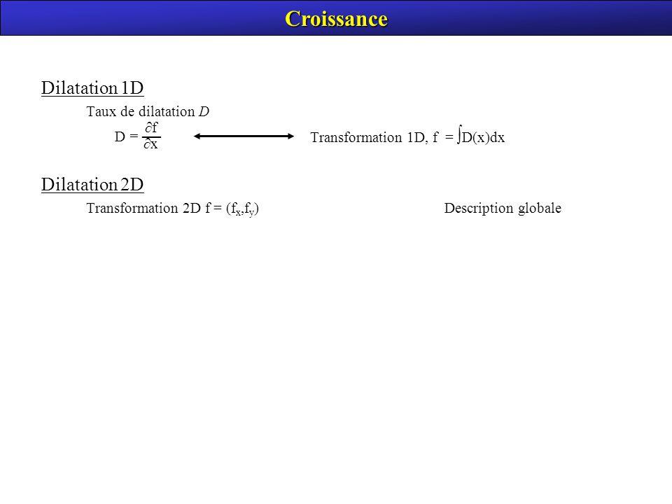 Croissance Dilatation 1D Dilatation 2D Taux de dilatation D
