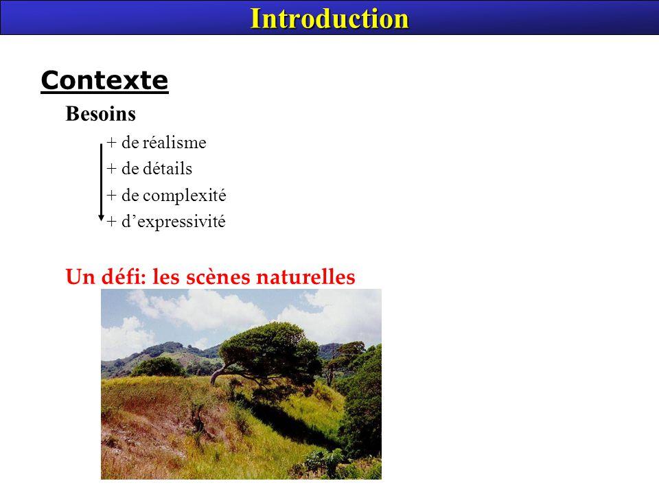 Introduction Contexte Besoins Un défi: les scènes naturelles