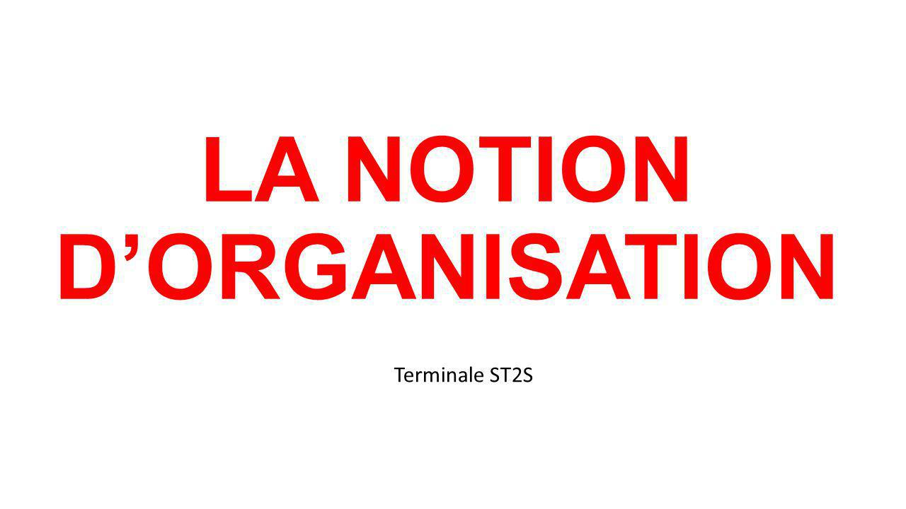 LA NOTION D'ORGANISATION