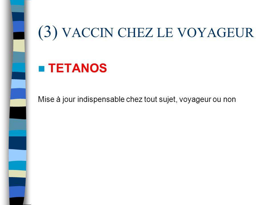 (3) VACCIN CHEZ LE VOYAGEUR