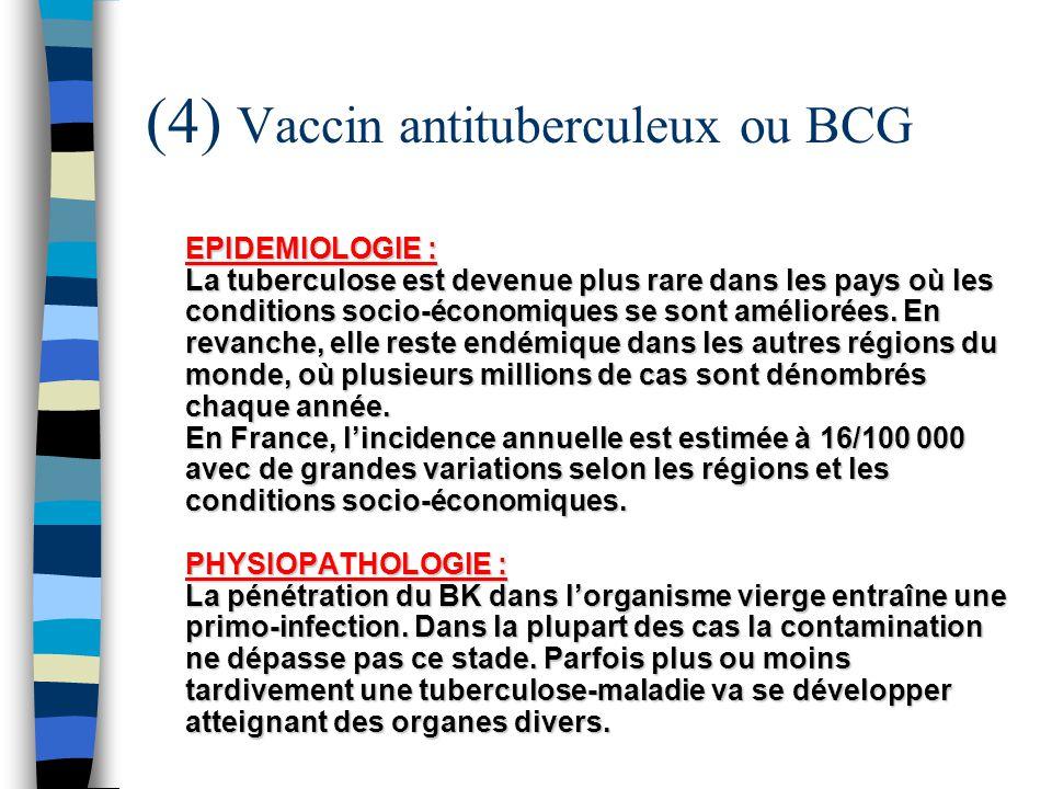 (4) Vaccin antituberculeux ou BCG