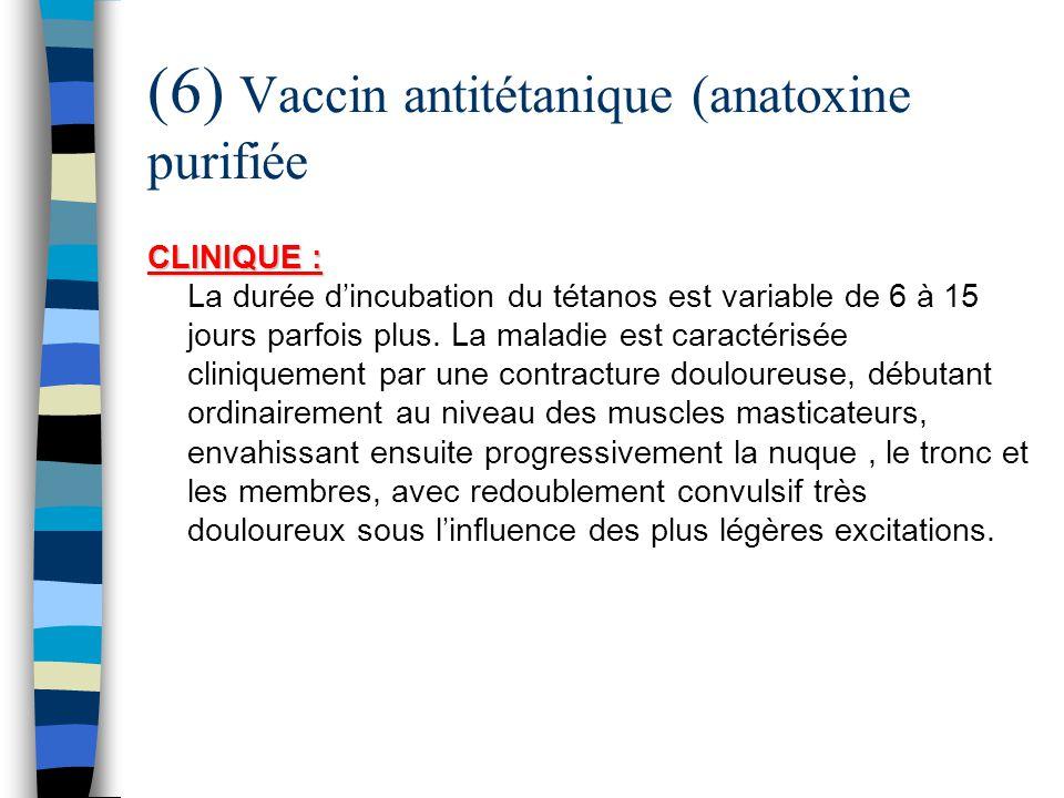 (6) Vaccin antitétanique (anatoxine purifiée