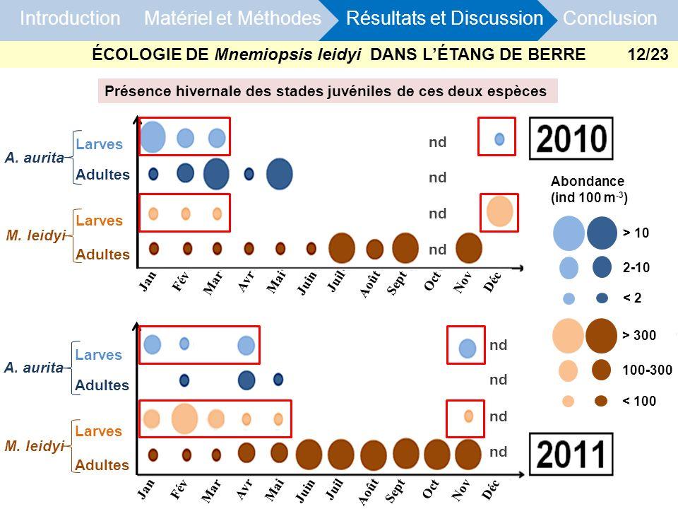 ÉCOLOGIE DE Mnemiopsis leidyi DANS L'ÉTANG DE BERRE