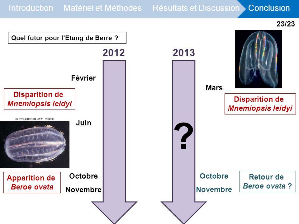 2012 2013 23/23 Février Mars Disparition de Mnemiopsis leidyi