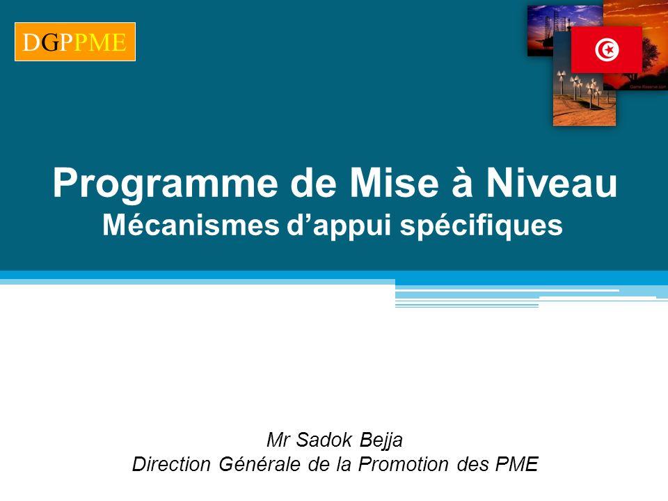 Programme de Mise à Niveau Mécanismes d'appui spécifiques