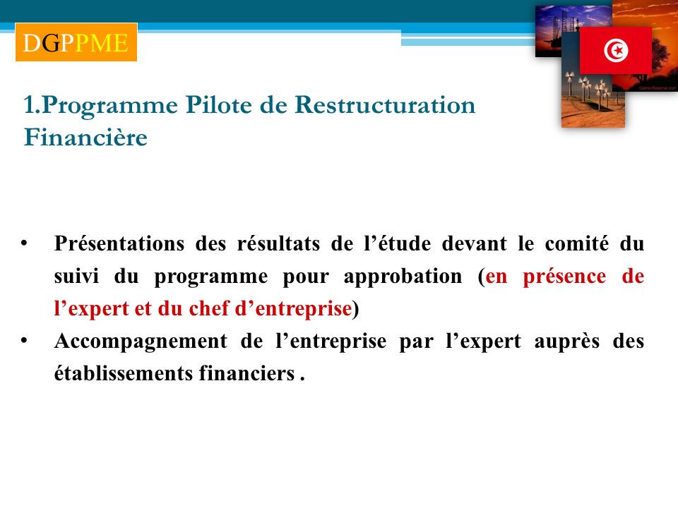 1.Programme Pilote de Restructuration Financière