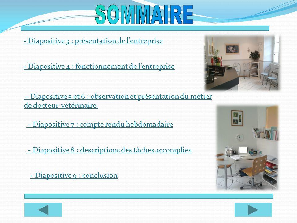 SOMMAIRE - Diapositive 3 : présentation de l'entreprise