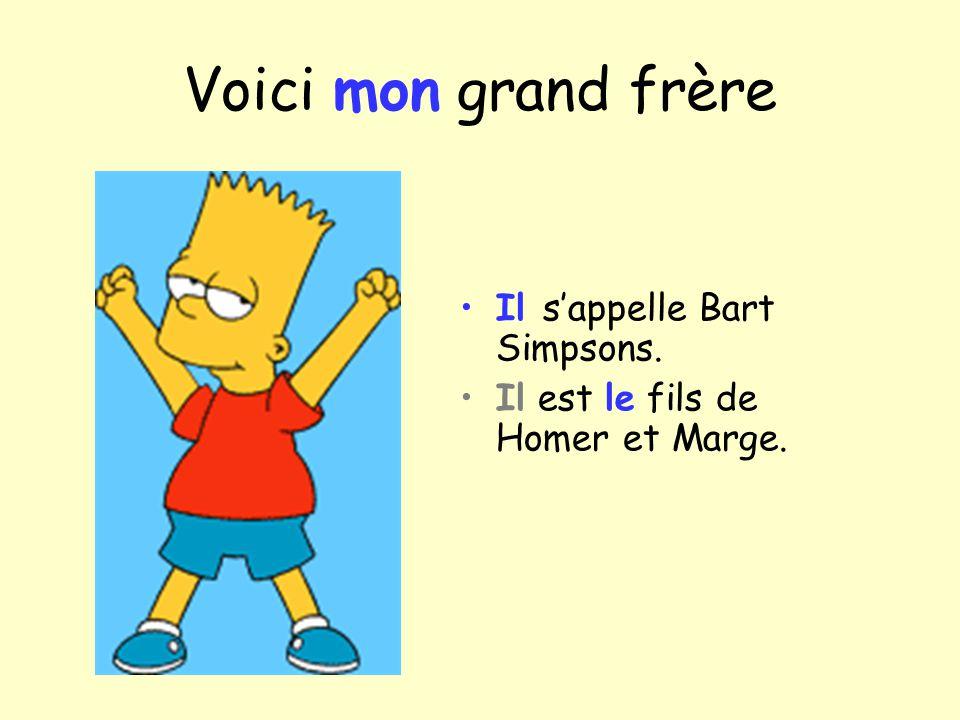 Voici mon grand frère Il s'appelle Bart Simpsons.