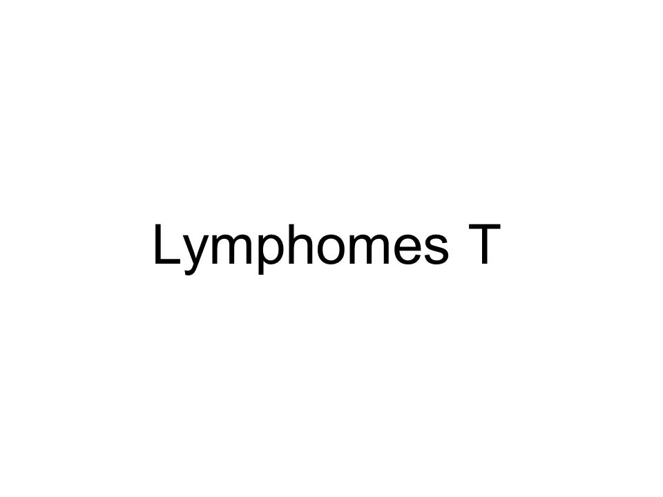 Lymphomes T