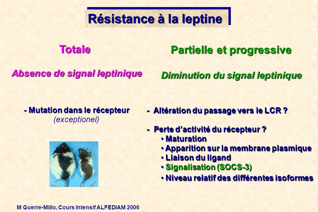 Résistance à la leptine