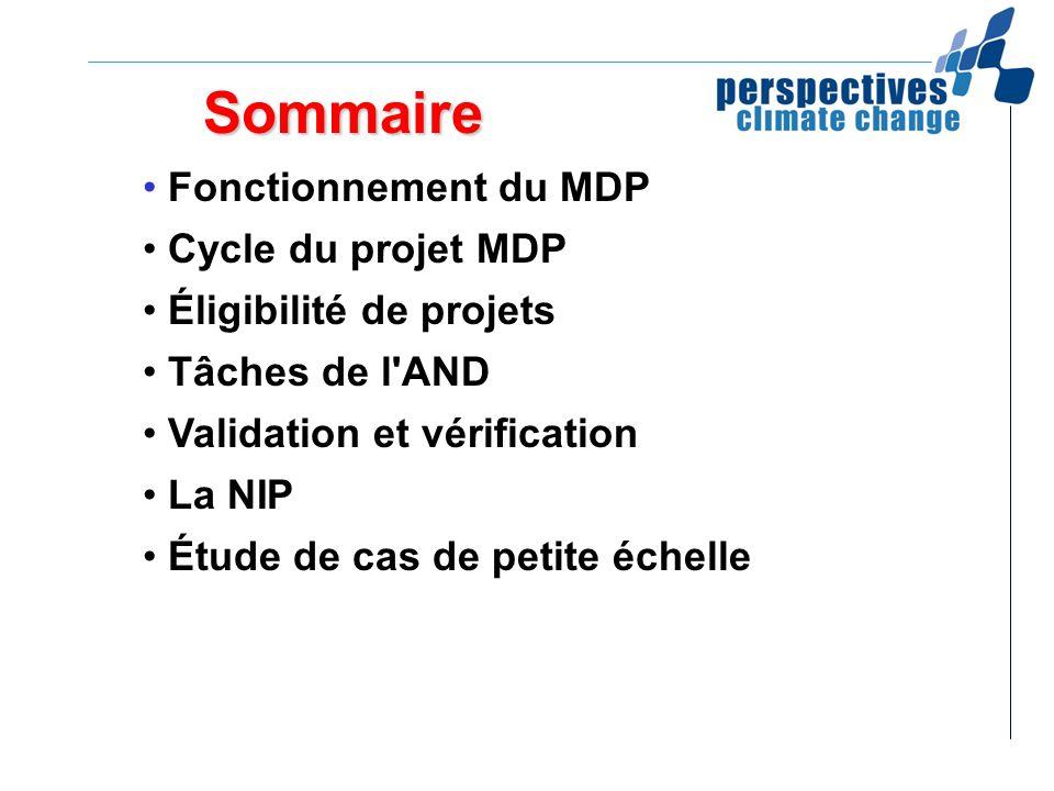 Sommaire Fonctionnement du MDP Cycle du projet MDP