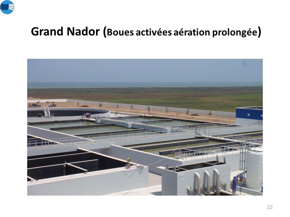 Grand Nador (Boues activées aération prolongée)