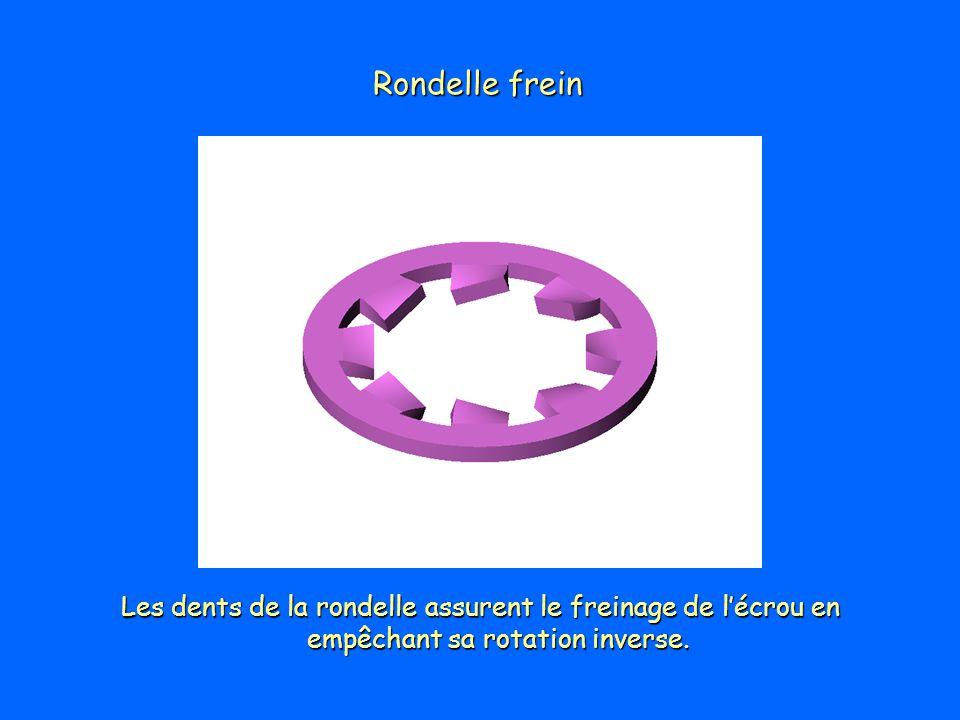 Rondelle frein Les dents de la rondelle assurent le freinage de l'écrou en empêchant sa rotation inverse.